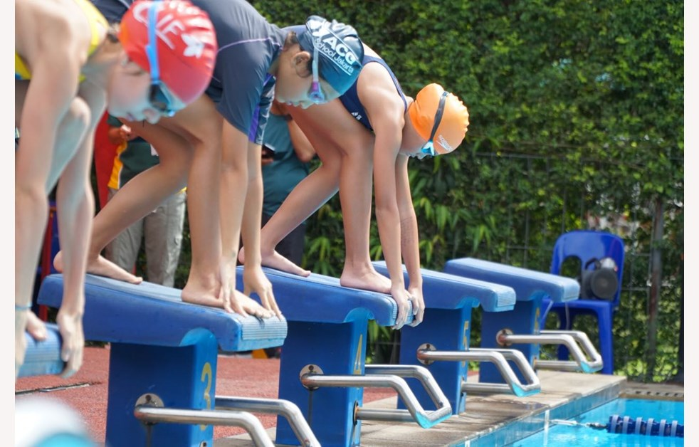 NIS SEALS Swimming Gala Event