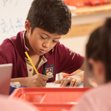 7 Tips for Learning at Home | British International School HCMC