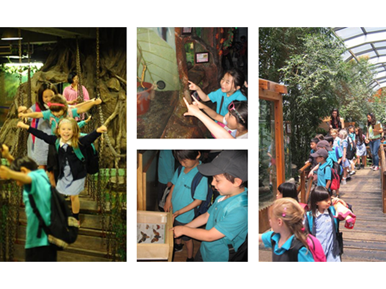 Year 1 Trip to the Shanghai Natural Insect Kingdom