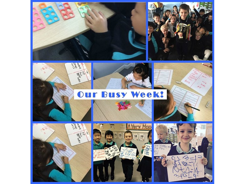 Year 1's busy week