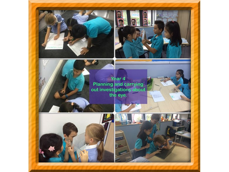 Year 4 Planning and Carrying out Investigations