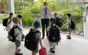 Dover Court International School Singapore Mr Mann Link