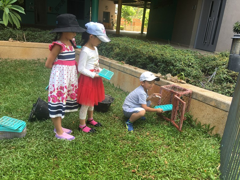 Northbridge International School Cambodia - Kindergarten