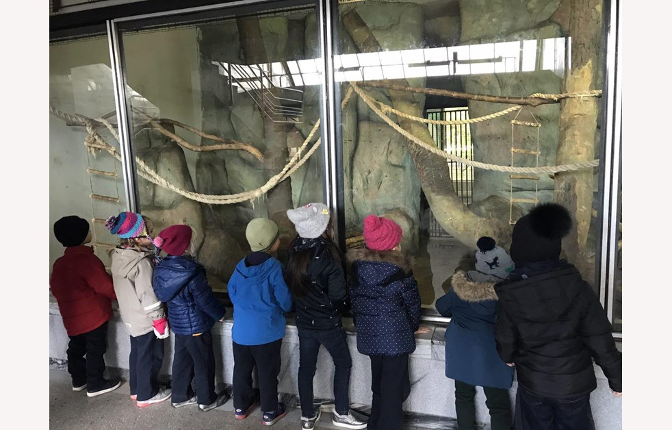 eyfs-zoo-visit (5)