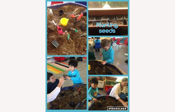 Planting seeds in Pre-Nursery 2