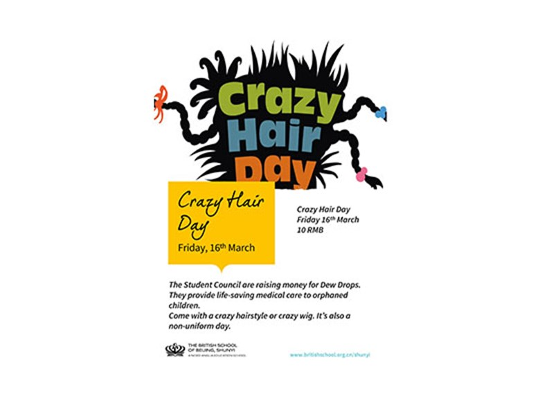 Primary Crazy Hair Day, 16th March 2018