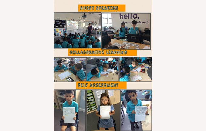 Collaborative learning in Year 5