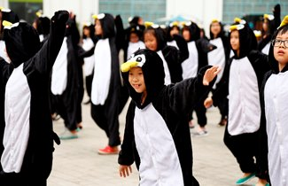 BVIS Hà Nội Watch Us Penguin Project 2016 (2)