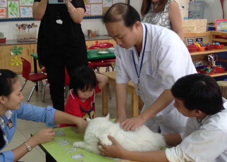 Dr Nghia and the Cat