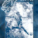 pudong tigers cover