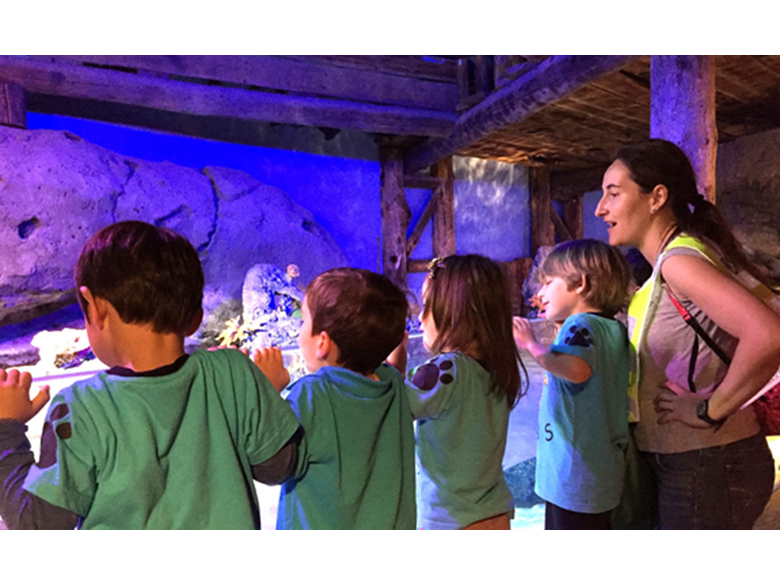 Nursery students at the British International School Shanghai Puxi visit the Shanghai Aquarium