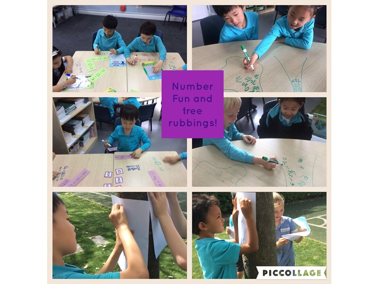 Year 1 enjoy number fun and tree rubbings