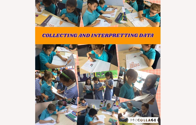 Collecting and interpreting data in Year 4