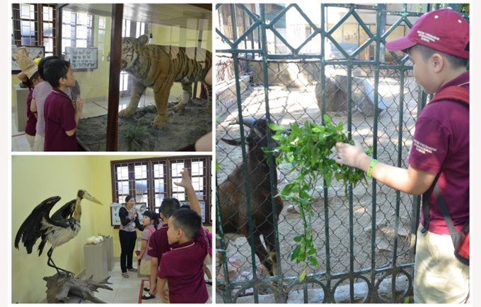 Year 3 trip to the zoo 2015 (2)