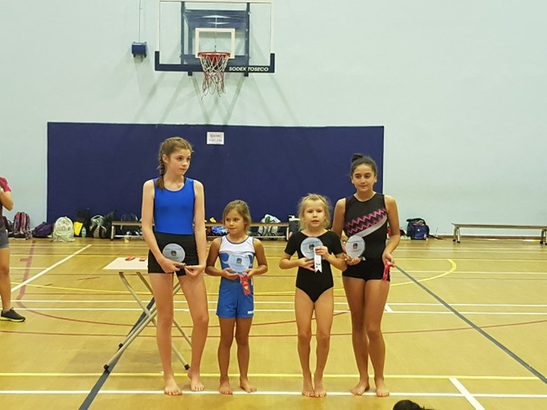 Gymnastics Competition (5)