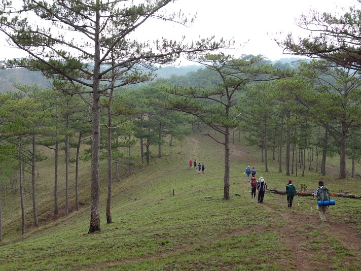 Year 10 International Award Dalat Trip 2015