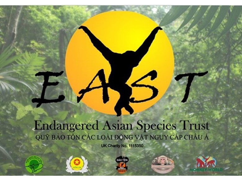 Year 6 (4)-EAST