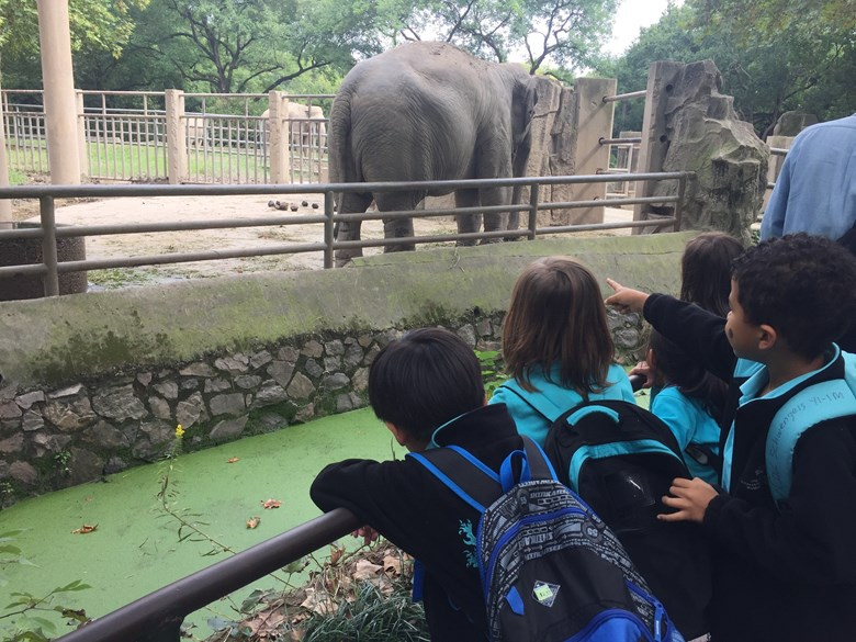 Year 1 Trip to Zoo