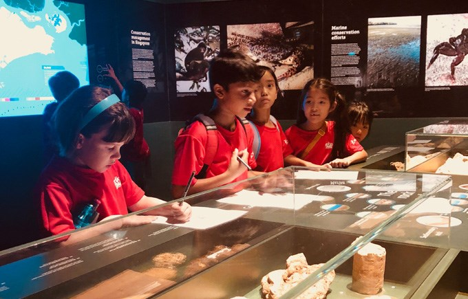 Year 3 Visit The Natural History Museum