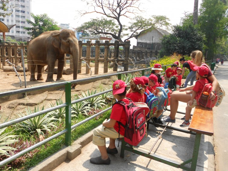 EYFS Trip to the Zoo