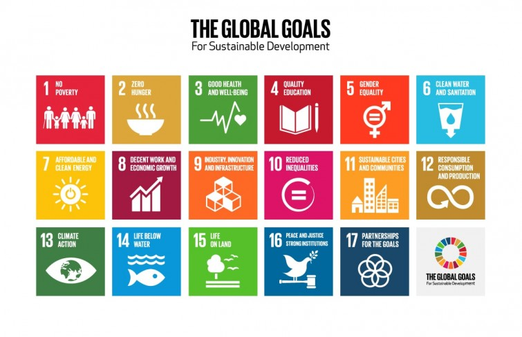 TheGlobalGoals_Logo_and_Icons-min