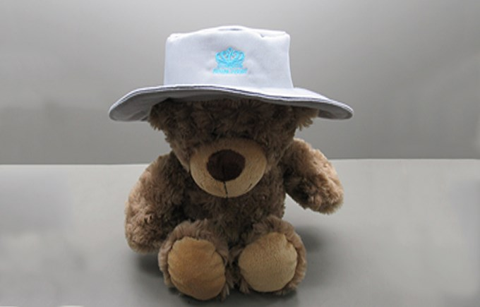 DC Bear with Sunhat