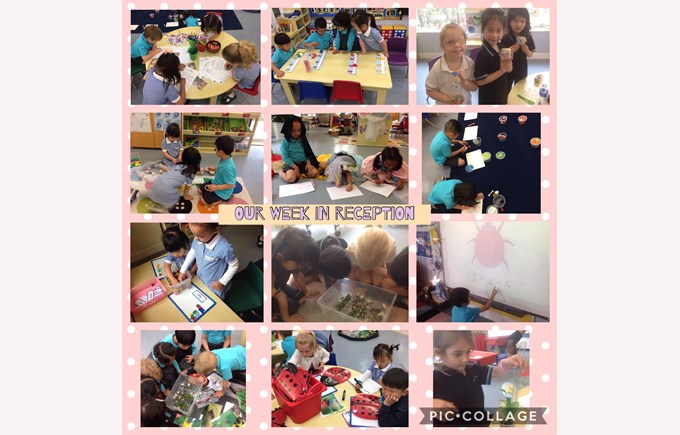 Reception enjoy a great week of learning