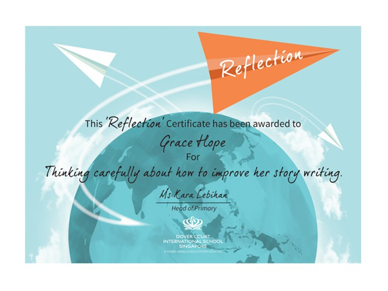 DCIS Vision Certificate Reflection