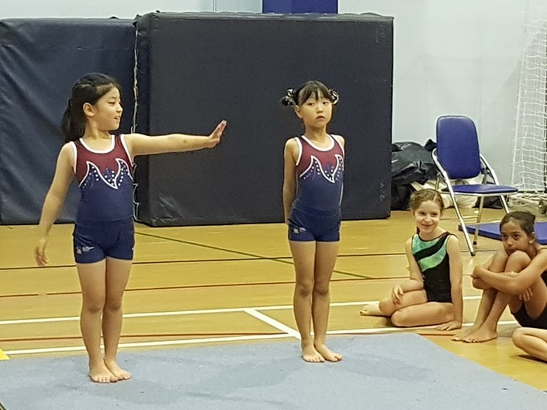 Gymnastics Competition (7)