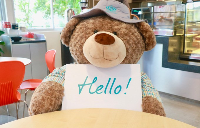 DC Bear with Hello Sign