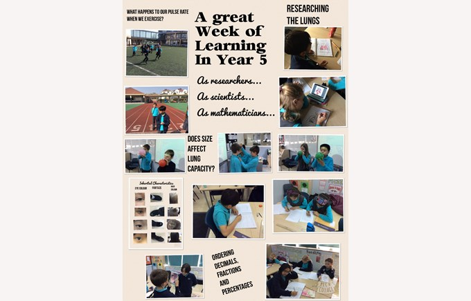 A great week of learning in Year 5