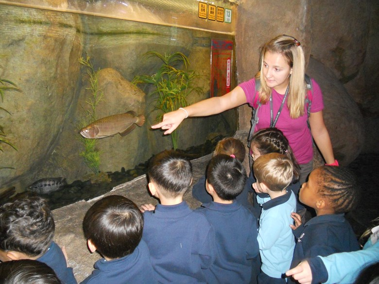 Children looking at fish while teacher points out interesting features