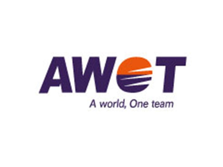 AWOT A world One Team