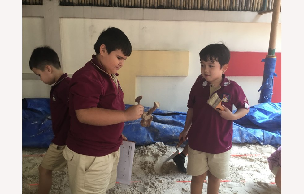 Fossils Found At BISHCMC 8