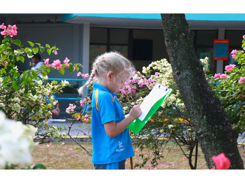 Dover Court International School Singapore How long is a jackfruit Outdoor maths Year 2
