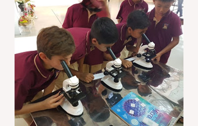 BIS Ho Chi Minh Year 5 and 6 visit a Art anf Science exhibit - 3