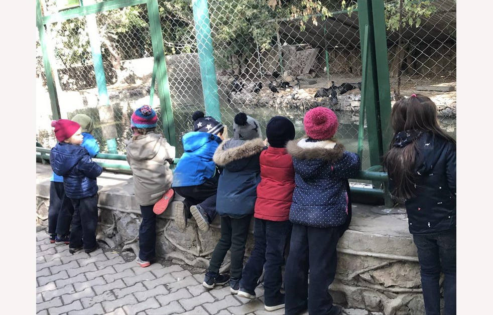 eyfs-zoo-visit (1)