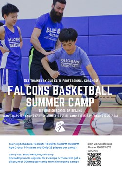 falcons basketball summer camp