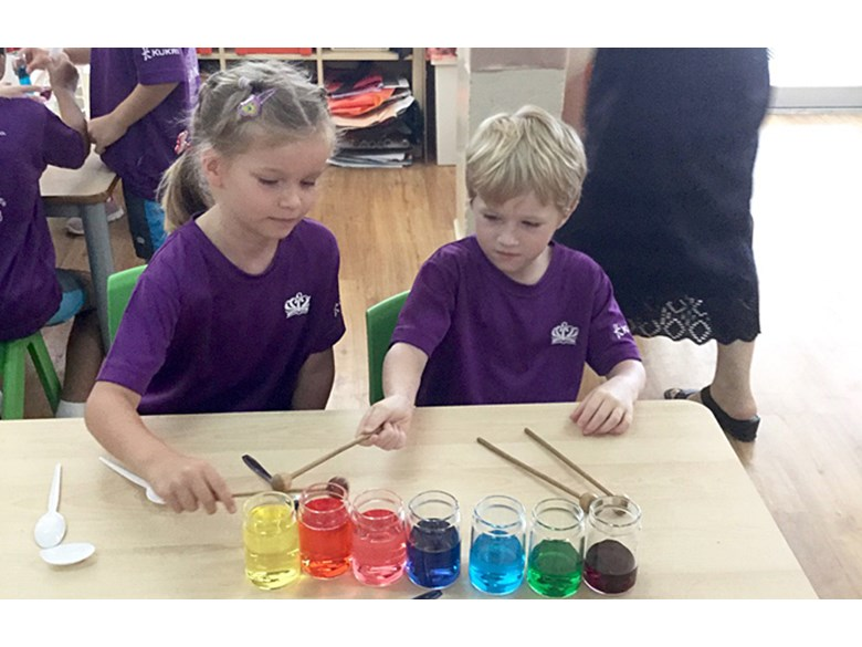 Year 2 Science House Day