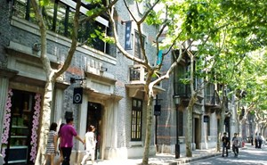 Image of people walking in The French Concession Shanghai, things to do in Shanghai, living in Shanghai, living in China, Shanghai China, The French Concession Shangai, Former French Concession, Green trees, sunny day.