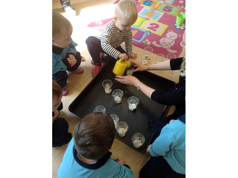 Tadpoles learning
