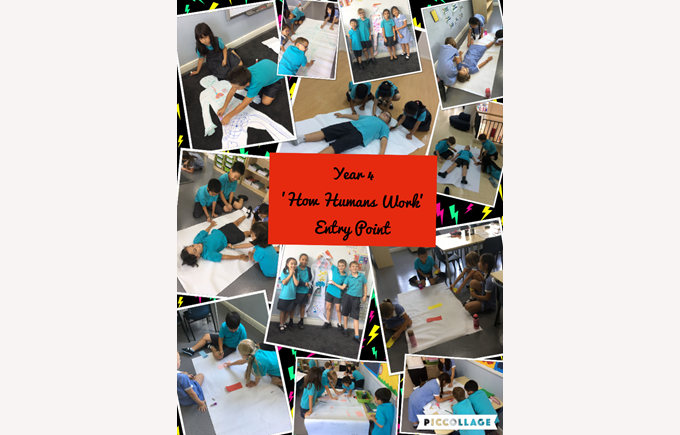 Year 4 explore 'How Humans Work'
