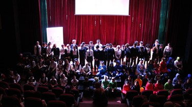 Primary performing arts (8)