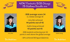 2016 IB results poster
