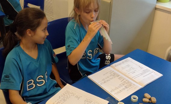 Y4 learning about sound