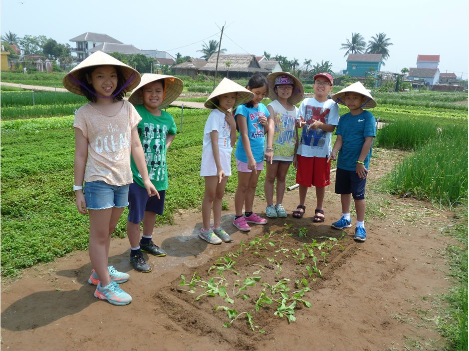 A group of students in the vegetable plot