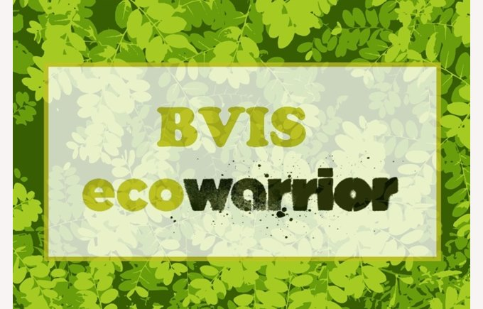 Eco-Warriors BVIS