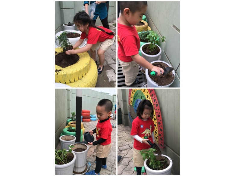 BVIS Early Years protect the environment (2)