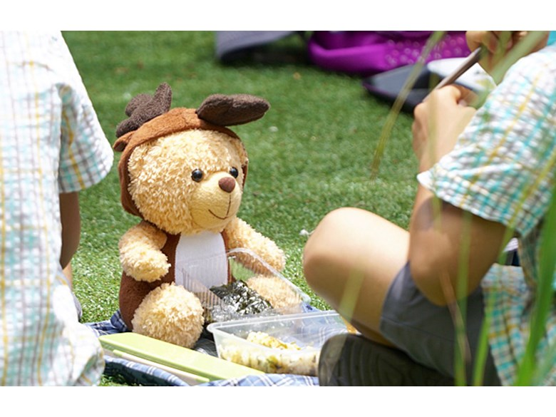 2AH Teddy Bear Picnic