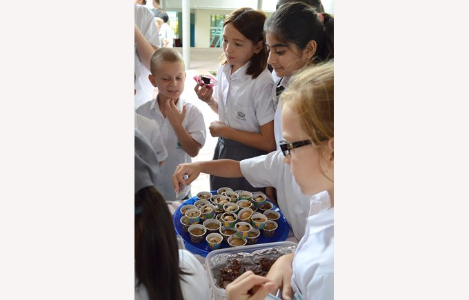 DCIS Benefit Bake Sale for SG Relief
